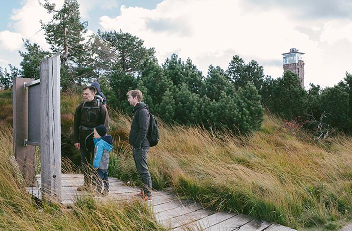 sonntagsausflug-schwarzwald-fuer-familien-hornisgrinde17