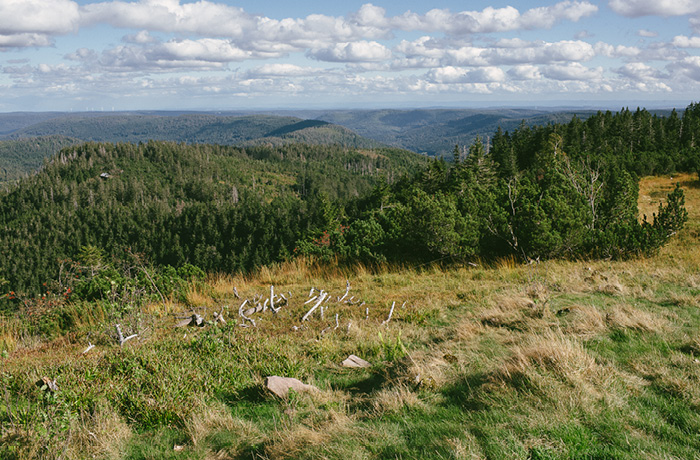 sonntagsausflug-schwarzwald-fuer-familien-hornisgrinde19